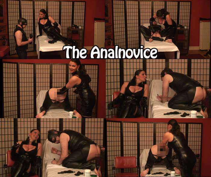 The Anal Novice